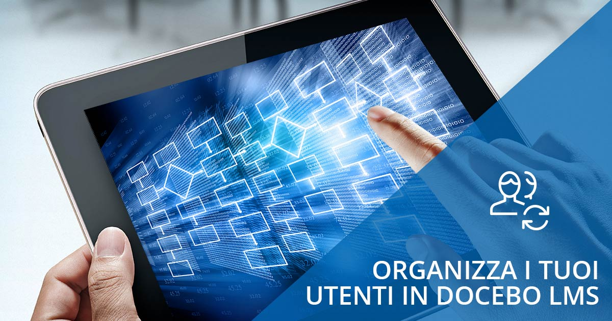 organize users docebo