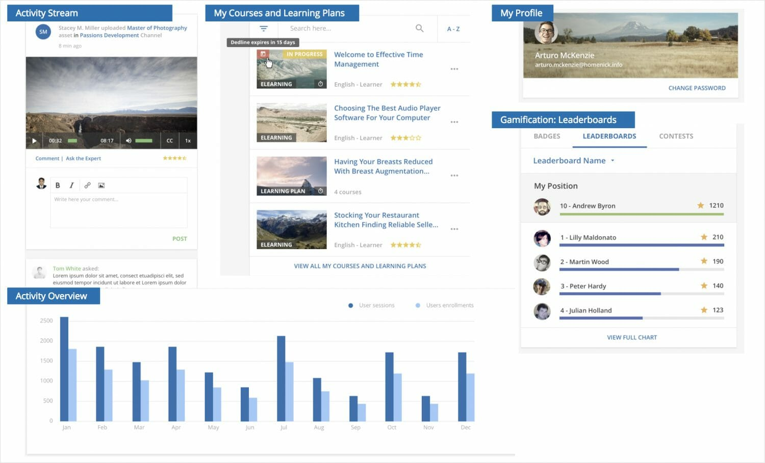 Adaptable widgets and templates to user profile